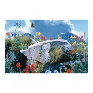 Rod Frederick Safe Haven - Summer Song Jigsaw Puzzle 1000pc