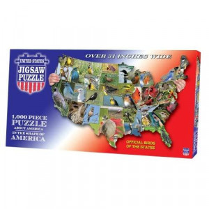 TDC games USA Shaped State - Flowers Puzzle